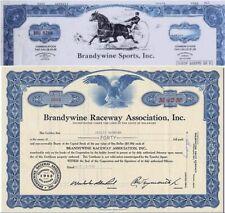 2 VINTAGE BRANDYWINE/DOVER DOWNS DELAWARE HORSERACING STOCKS @ $6.25! BEST PRICE