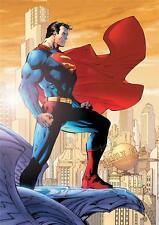 Superman 5 A3 Cartel A512