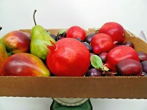 VTG Large Flat of Plastic Fruit (Plums, Cherries, Pears & Pomegranates)