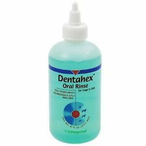 Dentahex Oral Rinse 8oz