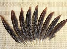 al por mayor 25-55 cm//10-22 pulgadas natural faisán plumas de cola /& 10-100 un