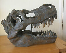 LARGE WALL HANGING OR TABLE TOP DISPLAY REPLICA T REX TYRANNOSAUR SKULL
