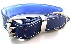 Blue Leather Dog Collar with Soft Light Blue Suede Leather Padded Inner Lining