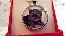 YORKSHIRE TERRIER PHOTO PENDANT 22 INCH SILVER PLATED CHAIN GIFT BOX BIRTHDAY