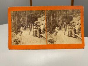 Antique Stereoview Large Group Of People Standing On Trail In Forest Yosemite?