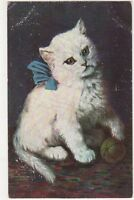 Star Series Art, Cats Postcard, B371