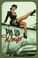 Wings Pin Up Girl Panneau Métallique Plaque Voûté Étain Signer 20 X 30 CM