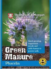 Thompson & MORGAN-concime verde-verde stallatico Phacelia - 50 g
