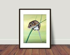 MOUSE LIMITED EDITION PRINT 10x8 with mount 14x11 by Sarah Featherstone,Wildlife