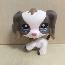 Littlest Pet Shop Animals LPS Toys #2254 Grey Spaniel Cocker Dog Figure