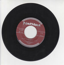 Dave POCHONET Les DEVIL'S GUITAR 45T SALUTE TO RAY BRYANT-MARINER TWIST PANORAMA