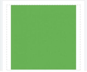 Green screen Chroma Key Green Screen Fabric For Zoom Tik Tok OBS Background
