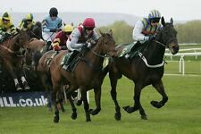 Price Equalisation Horse Racing System..Follow The Bookies Late Money
