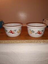 2 Corelle Coordinates Stoneware Fruit Custard Dish