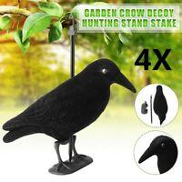 4x Garden Realistic Full Body Flocked Crow Decoy Hunting Shooting W/Feet & Stake