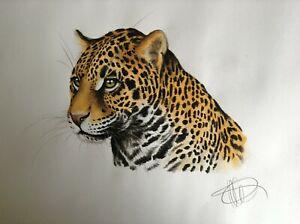 Original watercolour & pastel wildlife artwork - Jaguar portrait