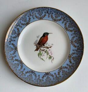 Vintage Liverpool Road Pottery Plate Bird Illustration