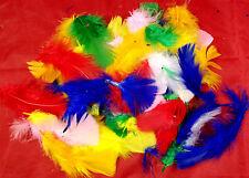 Feathers Art & Craft