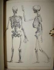 Hodson: DRAWING BOOK Cabinet of the Arts 1805 Tavole Disegno Anatomia Incisioni
