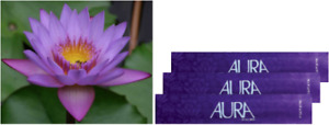 5 Packets of Aura Incense Sticks _ Five Scents Fragrances Sticks (100 Sticks)