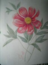 colored pencil drawing flowers red flower