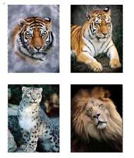 Deko-Wandtattoos & -Wandbilder mit Tiger für die Küche