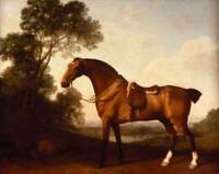 CHOP768 100% hand painted animal horse&landscape tree oil painting art on canvas