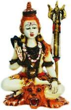 A Colored Statue Shiva Nataraja Mahadev Shiv Shankar Hindu God Destroyer of Evil