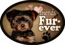 """Yorkie v2 (portrait view) - """"Friends Fur-ever"""" Oval Dog Magnet for Cars and Frid"""