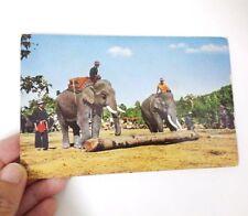 Old Postcard Elephant at Work Drawing Timber at Mae Sa, Chiengmai Thailand Photo