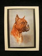 USA Dog Pet Sympathy Card w/envelope 5x4 Handmade Boxer