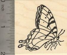 Tiger Swallowtail Butterfly Rubber Stamp H20702 WM