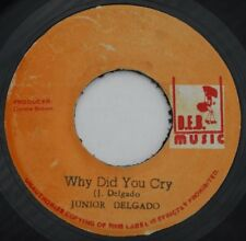 "KILLER ROOTS REGGAE - WHY DID YOU CRY - JUNIOR DELGADO - ORIG D.E.B 7"" listen"