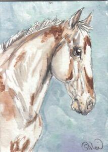 ACEO original Watercolor Art Card Horse varnish LP roaned bay Appaloosa Mare