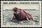 "TERRES AUSTRALES N°7 ""TIMBRE DE MADAGARCAR, ELEPHANT DE MER 15 F."" NEUF xx TTB"