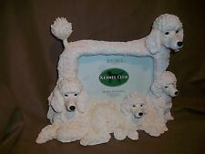 """(IMPERFECT) KENNEL CLUB WHITE POODLE PICTURE PHOTO FRAME 4"""" X 6"""""""