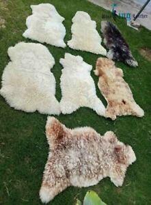 Genuine/ Real Sheepskin Rug Real Fur Very Fluffy Soft Wool Shaggy Hairy Area Rug