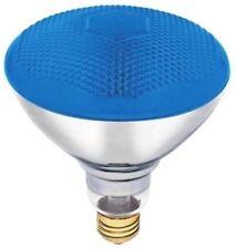 Westinghouse 0441400 - 100 Watt BR38 Incandescent Light Bulb