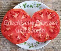🔥 🍅 German Giant Riesen-Tomate* alte Tomaten Sorte*10 Samen