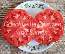 German Giant Riesen-Tomate* alte Tomaten Sorte*10 Samen