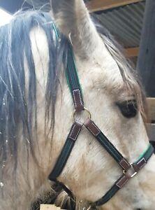 Green/blk  . Lgt-wgt Headcollar, shet,Pony,COB or Full , Leather & webbing .