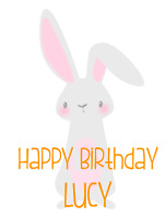 PERSONALISED BABYS FIRST 1ST BIRTHDAY CARD RABBIT 2ND 3RD 4TH GIRL BOY