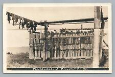 Dried Fish Stockage RPPC Fort Providence—Northwest Territories Photo 1910s