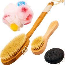 Hairizone Nanmu Bamboo Body Brush Spa Kit Includes Boar Bristle Brush, Mini Face
