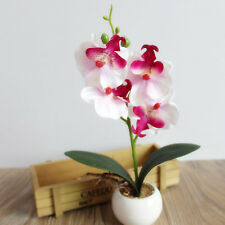 Artificial Orchid Plant in White Pot - 26cm Tall Silk Flower Potted Flower Home