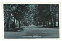 East Green Street View MIFFLINBURG PA Union County Pennsylvania Postcard