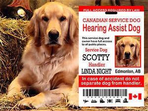 Canadian Service Dog Card, Hearing Service Dog Id Tag Card , Service Dog Tag