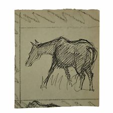 Old Pen and Ink Horse Sketch Drawing
