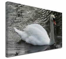 More details for beautiful swan x-large 30