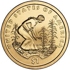 2009 Sacagawea Native American Golden Dollar P&D Set